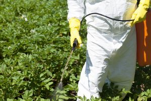 A man in a bio hazard suit spraying plants